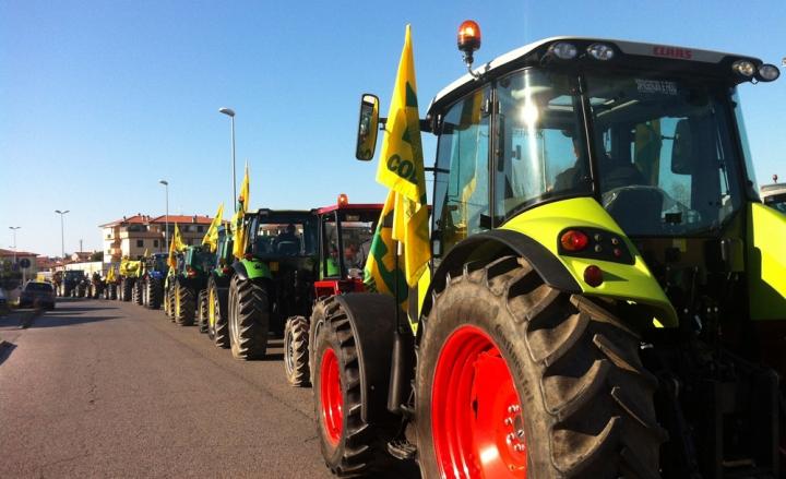 Agroalimentare: Coldiretti, con speculazione grano addio a 300 mila aziende