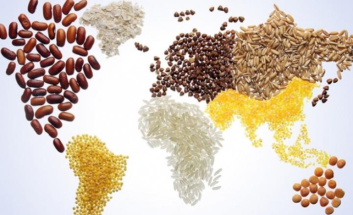 Il 2018 sarà l'anno dedicato al cibo italiano